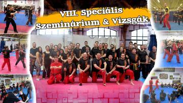 VIII. Speciális Eskrima Szeminárium & Vizsgák 2018